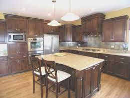 kitchen best kitchen cabinets hawaii decor modern on cool