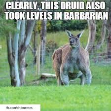 Kangaroo Meme - 20 more dnd memes to read while you wait for your turn to attack