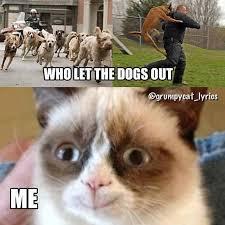 New Grumpy Cat Meme - 75 hilarious grumpy cat memes best cat memes love memes