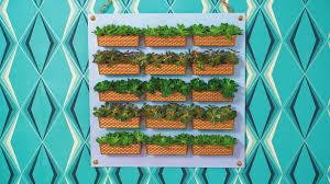 Vertical Veggie Garden Dollar Store Vertical Garden Video Hgtv