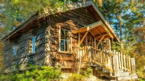 Small House Cabin Eco Built Cabin In Eastsound Washington Perfect Small House