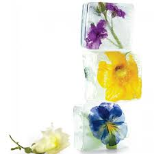 Where To Buy Edible Flowers - floral ice cubes martha stewart