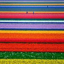 best flowers garden in the world