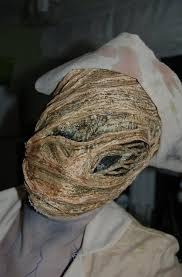 Silent Hill Halloween Costume 1000 Images Pain