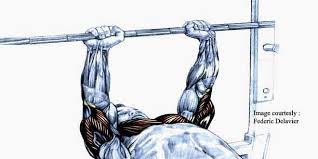 Close Grip Bench Press Benefits Close Grip Bench Press Benefits In Hindi Bodylab In