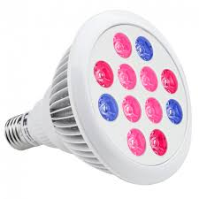hydroponic led grow lights lighting le 12w par38 coloured bulbs red blue hydroponic led grow