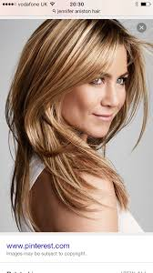 Best Natural Highlights For Dark Brown Hair Warm Toned Honey Gold Highlights Haircolor Demo Book