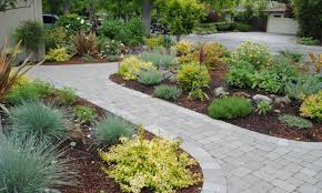 paved patio design with small shrubs for simple backyard