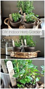 Table Top Herb Garden Diy Table Top Herb Garden From An Old Pallet Via Make It And