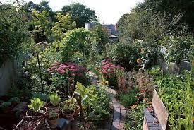 the edible january 2014 the secret garden