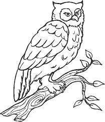 176 best coloring book art images on pinterest art worksheets
