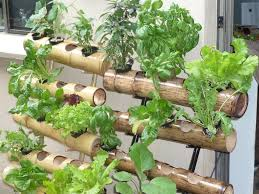 Hydroponics Vegetable Gardening by Bamboo Vertical Gardens Garden Pinterest Gardens Plants And