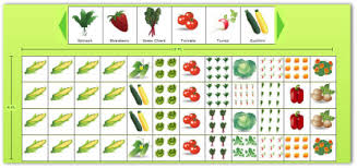 Companion Gardening Layout Planning A Garden Layout With Free Software And Veggie Garden Plans
