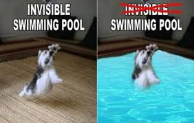Invisible Cat Memes - cat activities made visible 10 pics