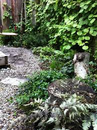 778 best shade garden ideas images on pinterest garden ideas