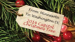 from minnesota to washington d c the 2014 u s capitol christmas