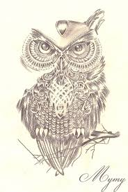 owl tattoos design 20 best tats images on pinterest drawings owl tattoos and