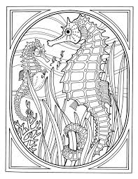 Detailed Realistic Seahorse Hard Coloring Pages For Grown Ups Free Intricate Coloring Pages