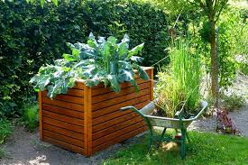 small backyard vegetable garden complete with wooden garden