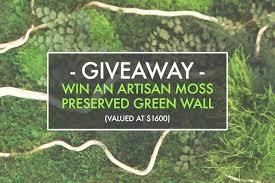 Rainforest Wall Stickers 49 Best Of Moss Wall Art