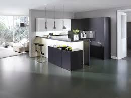 sejour ouvert sur cuisine cuisine ouverte sur salon photos deco salon cuisine americaine deco