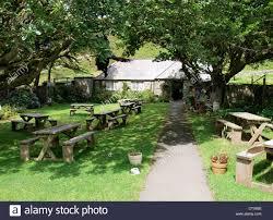 mother meldrums tea garden and restaurant valley of rocks