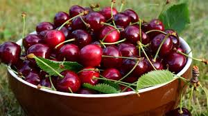 Seeking Bowl Of Cherries The Immortality Fruit Cherry Fruit Magical Properties And Uses