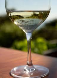 exclusive big glass of wine invisibleinkradio home decor