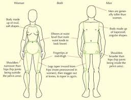 Anatomy Of Human Body Sketches 33 Best Human Proportions Images On Pinterest Art Tutorials