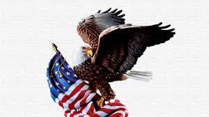 american wallpaper american eagle wallpaper widescreen yodobi