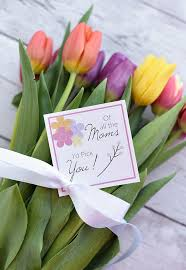 mother u0027s day gift idea flowers for mom u2013 fun squared