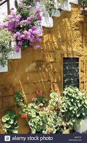 town port narrow street alleyway house wall door flowering stock