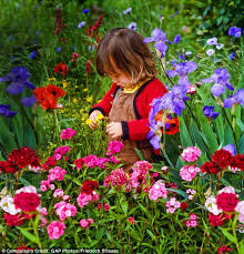 Family Garden - how to create the dream garden in this ultimate makeover guide