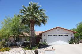 mexican fan palm growth rate time to trim your mexican fan palms june 15 sonoran tree service