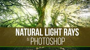 natural light how to make natural light rays in photoshop f64 academy