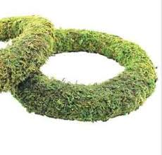 moss effect ready padded wreath 25cm 10 inch dia great for