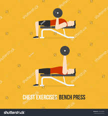 chest exercises bench press flat design stock vector 454183648
