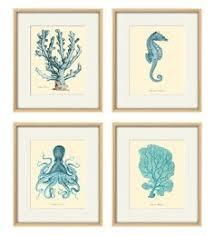 Vintage Home Decor Nz Seahorse Vintage Prints Old Prints Home Decor Wall Art Ocean Decor