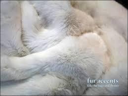 Taxidermy Bear Rug Living Room Magnificent Polar Bear Skin Rug Taxidermy Bear Head