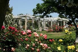 Huntington Botanical Garden by Nick Appearances 2nd Annual