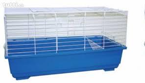 gabbie per conigli nani usate gabbia per conigli e roditori 120x60 mai usata in ticino acquistare