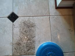 cleaning bathroom tile grout with vinegar cleaning floor tiles