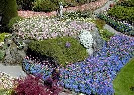 op ed spring blooms at british columbia u0027s premier show garden