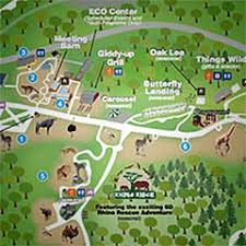 chicago zoo map franklin park zoo hours information and faq