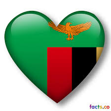 Colors Of Flag Meaning Zambia Flag All About Zambia Flag Colors Meaning Information