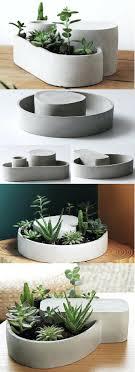 Best Flowers For Office Desk Office Design Great Office Plants Great Flowering Office Plants