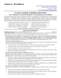 C Level Executive Resume Samples by Download Business Consultant Resume Sample Haadyaooverbayresort Com