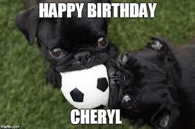 Birthday Pug Meme - happy birthday cheryl meme