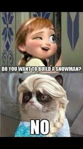 Grumpy Cat Snow Meme - grumpy cat frozen google search funny pinterest grumpy cat