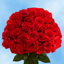roses delivery roses delivery global